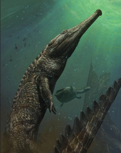 30-Foot Prehistoric Crocodile Lived In The Sahara, says new Research