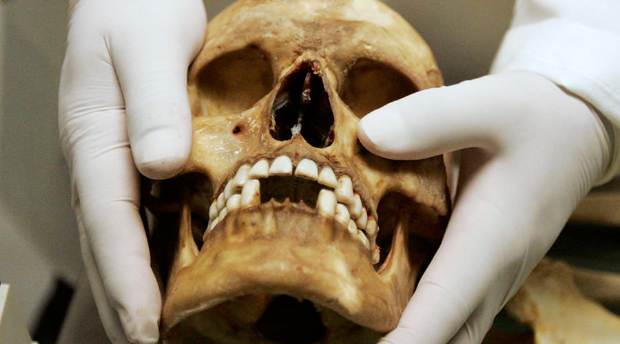 Irish Genome Sequenced, Revealing Early Celtic Origins : says new Research