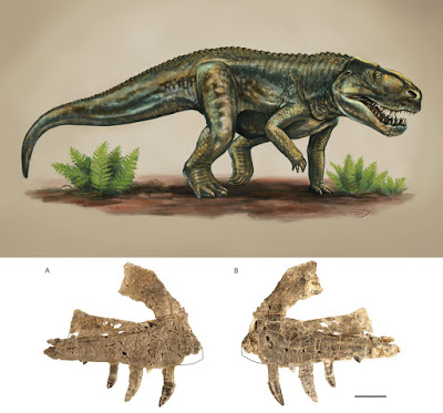 New Mexico: Ancient reptile species from 212 million years ago identified