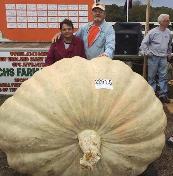 2261 Pound Pumpkin Sets Record [Video]