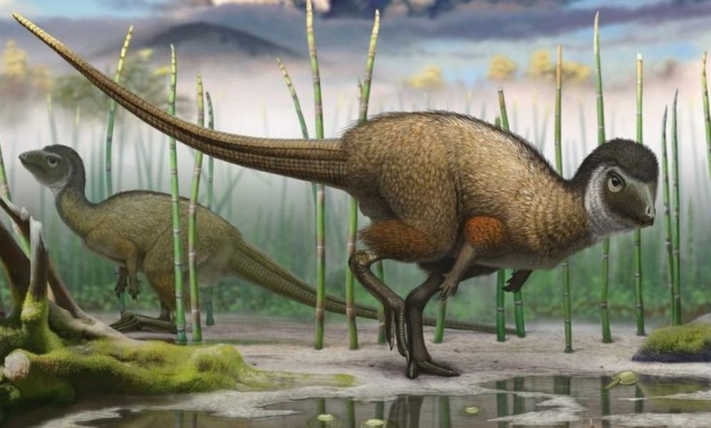 Dinosaurs May Have Originated In The UK, A New Study Reveals