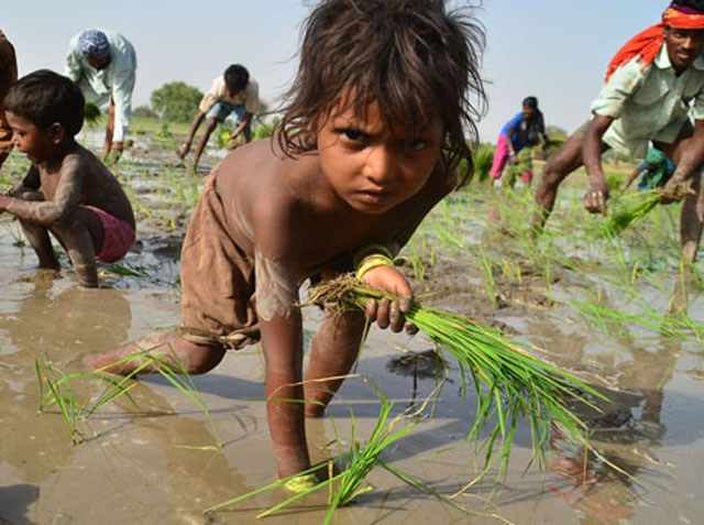 United Nations: 40 Million In Modern Slavery, 152 Million In Child Labour