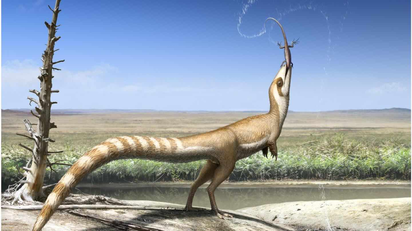 Small dinosaur used colours for protection, says new research