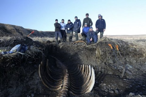 Remains of extinct giant sea monster found (Picture)