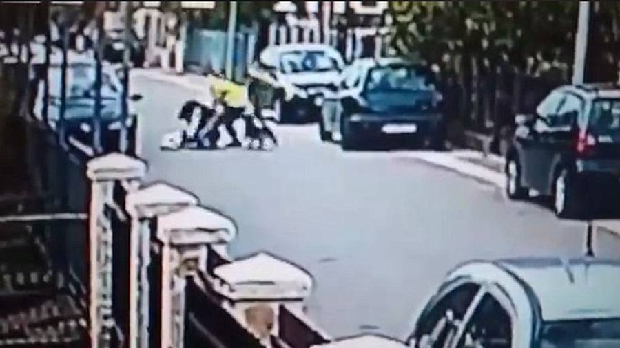 Stray dog saves woman from mugger - Watch video