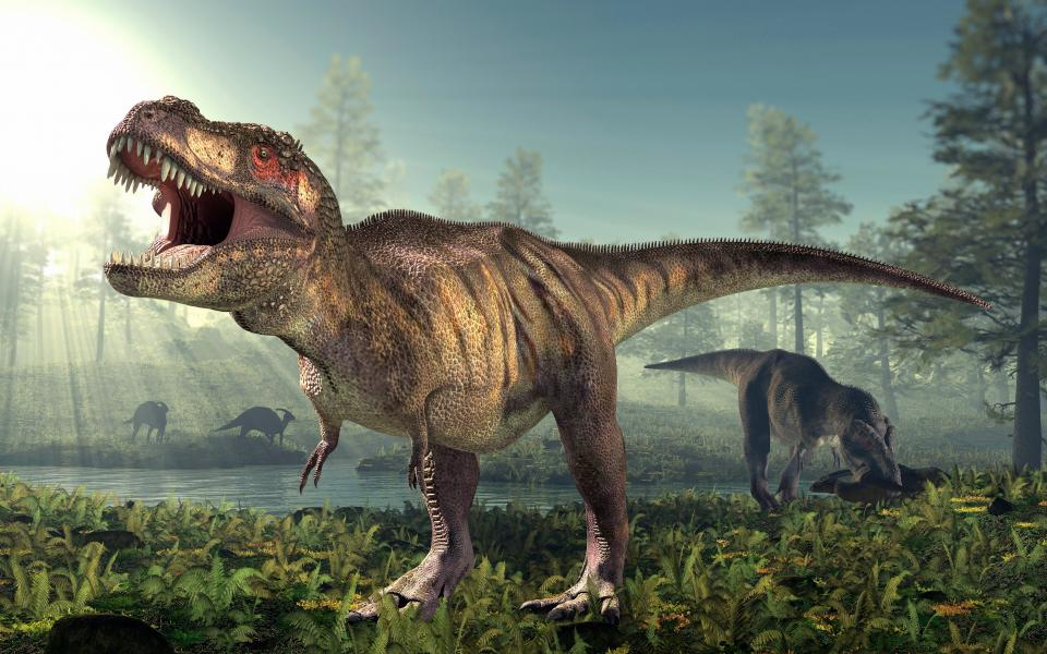 T. Rex's tiny arms may have been 'vicious weapons', researchers say