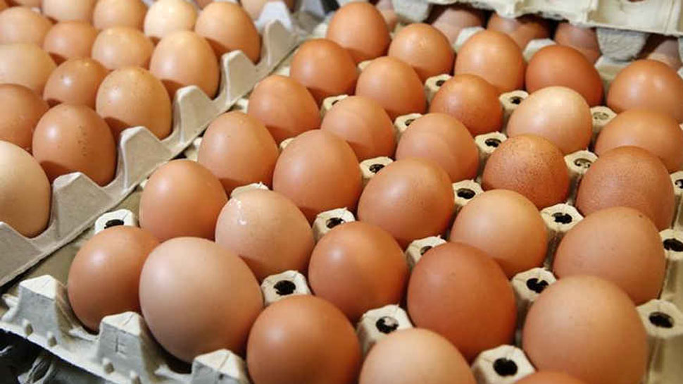 Norway's Olympic team meant to order 1,500 eggs