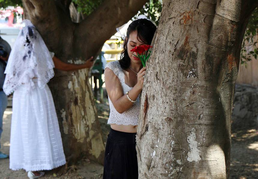 Woman marries tree to protest development