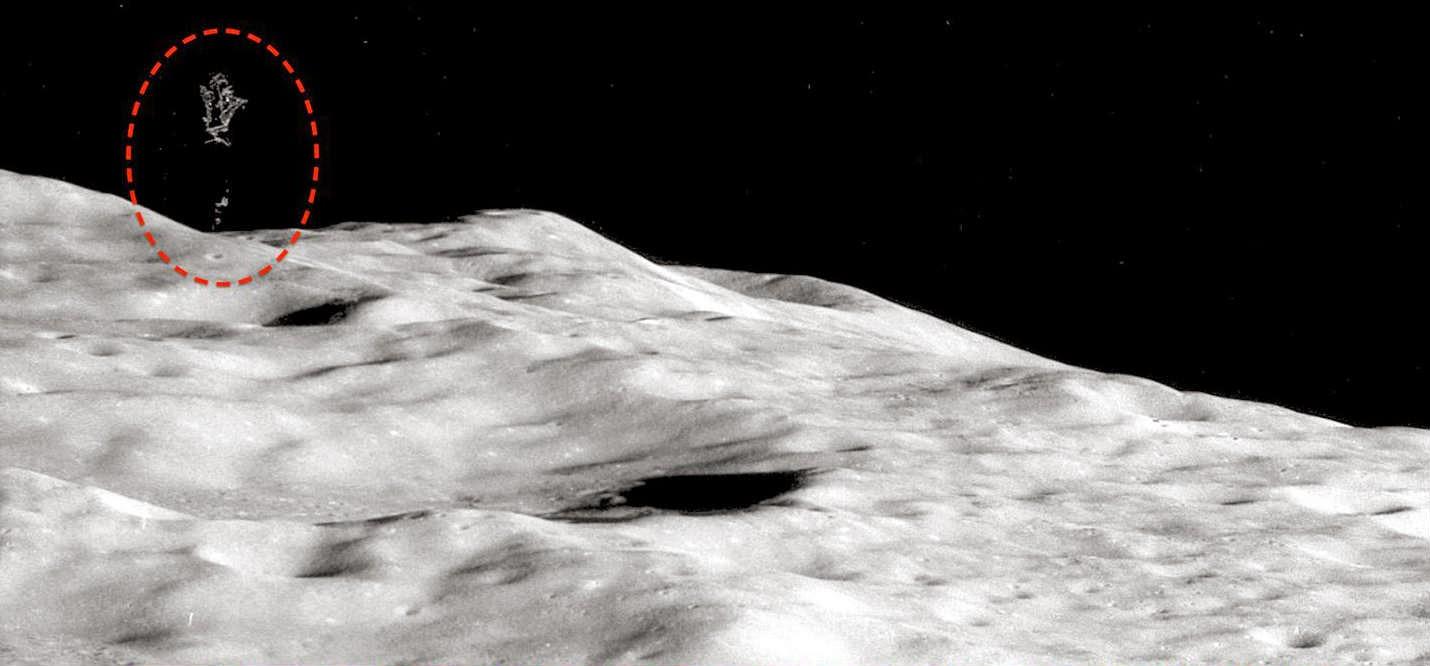 Buzz Aldrin Alien claim: Astronaut passes lie detector test