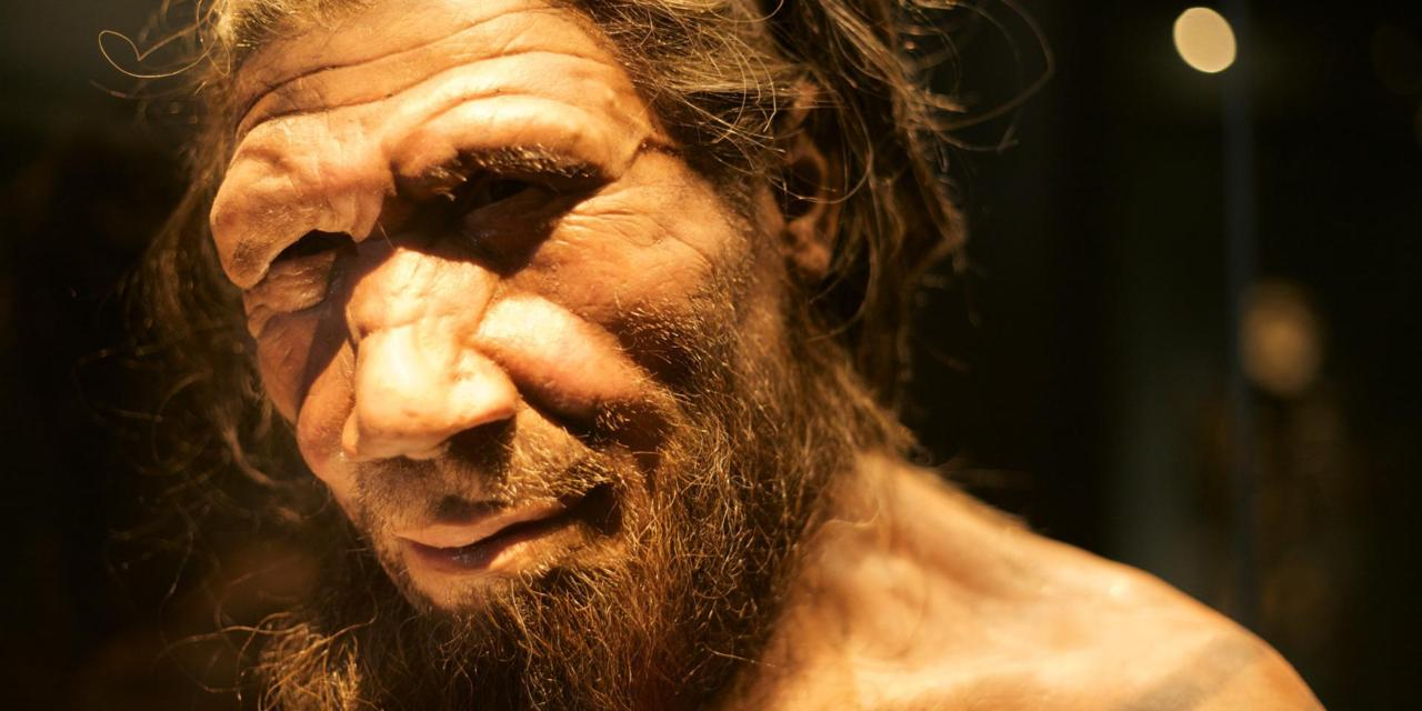 New Research: Why Neanderthals Had Faces That Were So Different From Ours