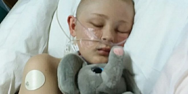 Trenton McKinley: Boy, 13, comes back to life day