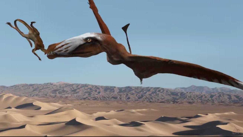New species of pterosaur discovered in Utah desert