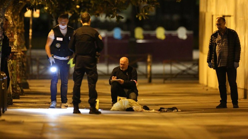 Paris knife attack: Afghan man stabs seven, tourists among wounded