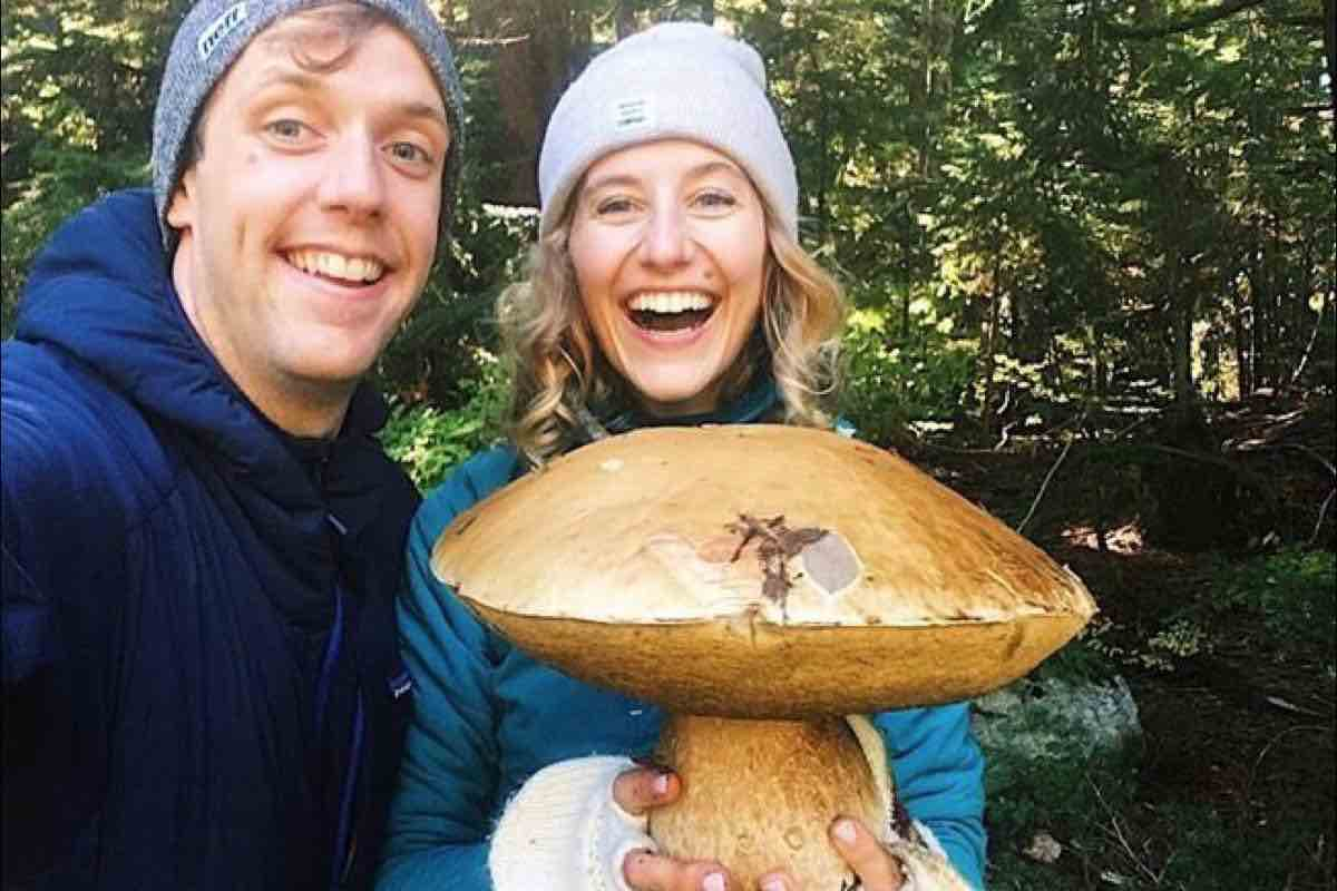 Giant mushroom find makes Thanksgiving tastier for couple (Picture)