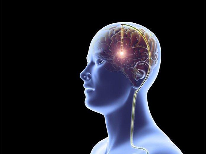 Brain works backwards to retrieve memories (New Study)