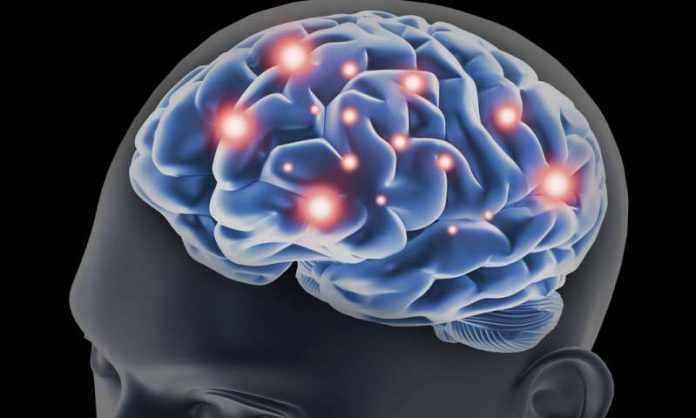 Restoring Memory Function In Familial Alzheimer's May Be Possible (Study)