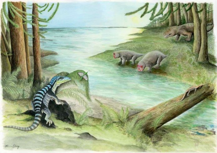 "Antarctic king fossil, Tyrannosaurus rex may have reigned as ""king of the tyrant lizards"""