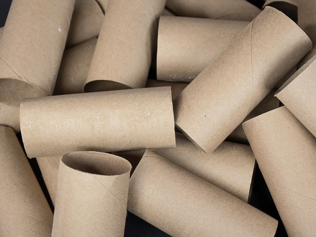 US plush toilet paper use wiping out Canada's forests, Report