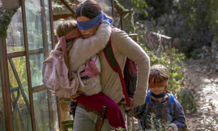 Bird Box tragedy footage pulled after criticism