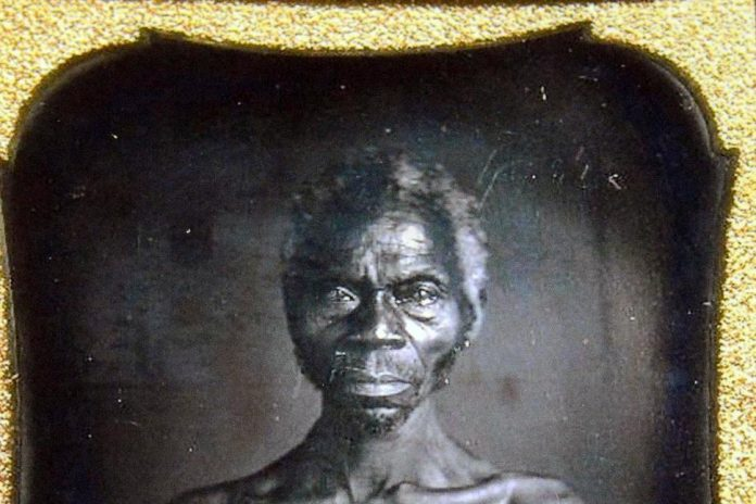 Harvard Profits From Photos Of Slaves (Reports)