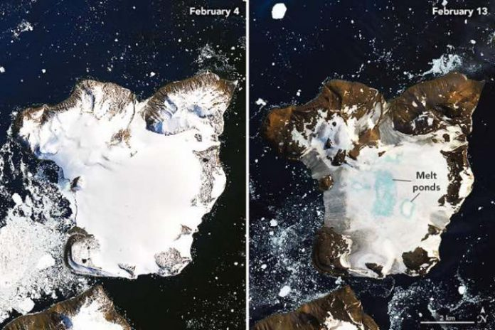 Antarctica's Eagle Island undergoes large-scale snow melt, Report