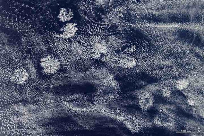 Australia: Satellite spies gigantic 'fuzzball' clouds (Picture)