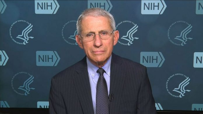 Coronavirus USA Update: 'We will lose more people,' Dr. Fauci warns