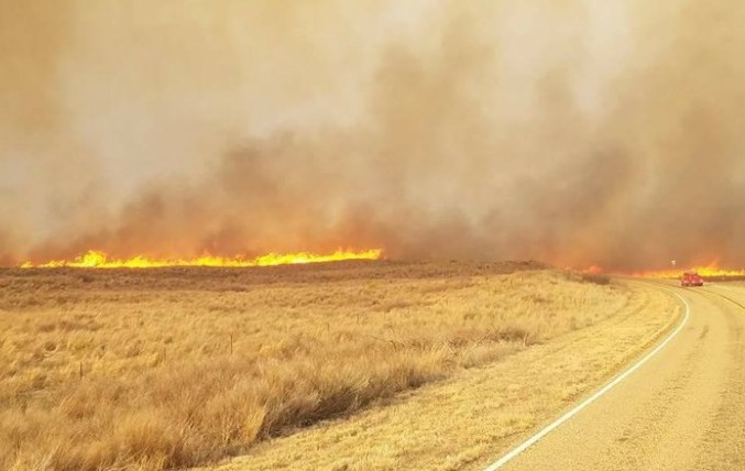 Oklahoma: At least 30 wildfires have burned more than 30000 acres