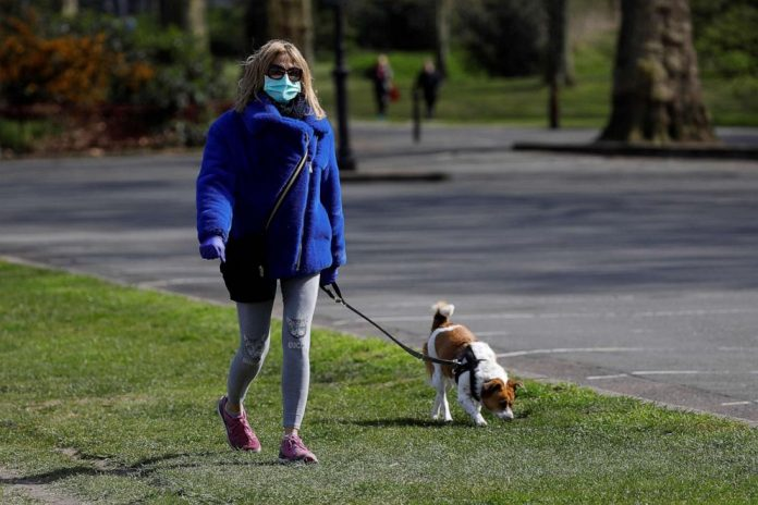 Coronavirus USA Updates: Family's dog thought to be 1st in US to test positive for COVID-19