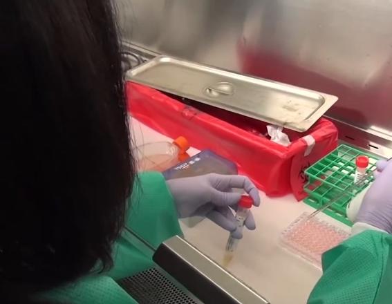 Coronavirus USA Updates: California's COVID-19 cases continue to increase
