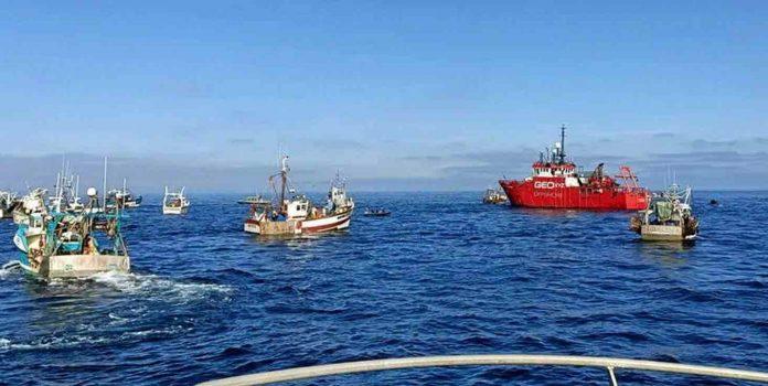 French fishermen could suffer under retaliatory measures if EU fails to lift ban on UK shellfish, Report