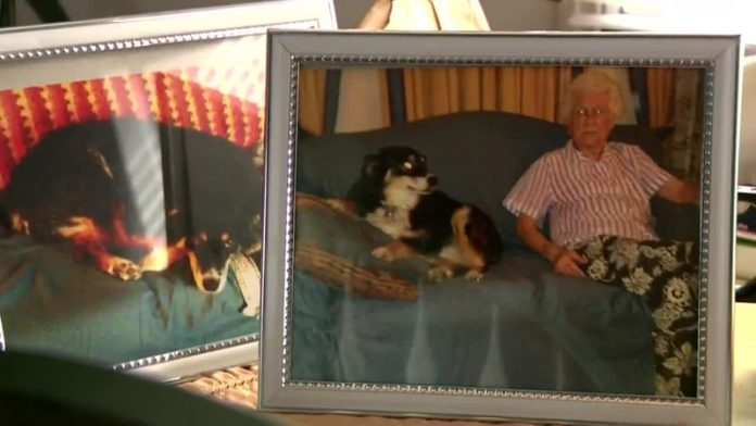 Tennessee dog inherits $5 million after owner's death, Report