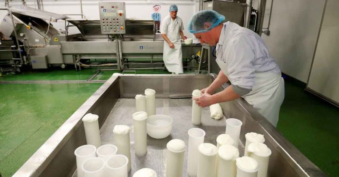 UK: Brexit shuts off EU market for English 'truckle' cheese producer