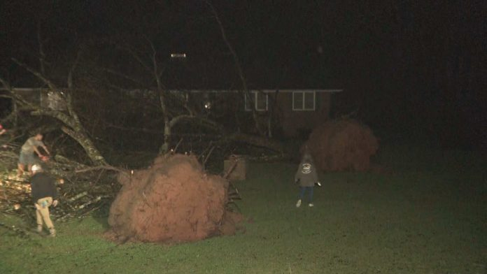 Coweta County Schools cancels classes for Friday after storm damage, Report