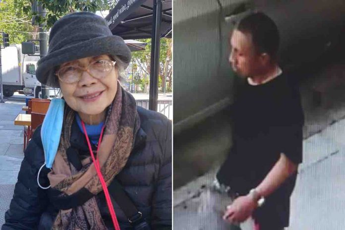 Daniel Cauich: Suspect arrested after 94-year-old Asian woman stabbed repeatedly
