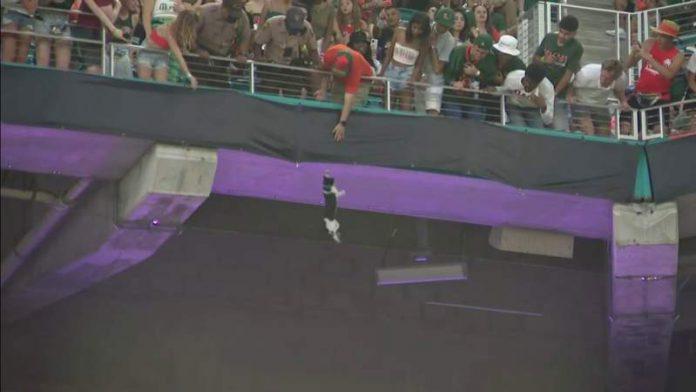 Hard Rock Stadium cat: Miami Hurricanes fans use flag to catch cat